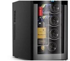 Tủ bảo quản rượu 25L BCW-25