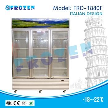 Tủ đông cánh đứng Frozen FRD-1840F