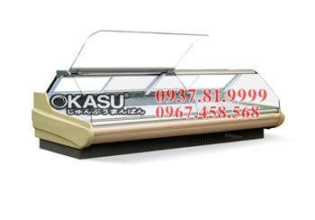 Tủ trưng bày và bảo quản OKASU-SCG-D-2.5M