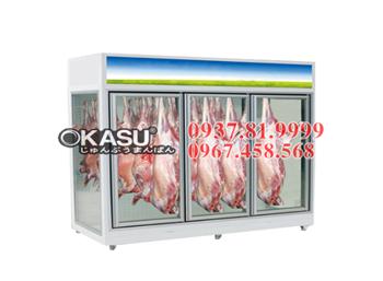 Tủ mát trưng bày thịt tươi OKASU - 09FE-4C